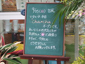 2005_0925chacha0007.JPG